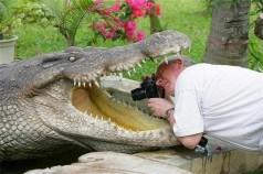 20 фотографий, которые доказывают, что фотограф дикой природы — лучшая профессия