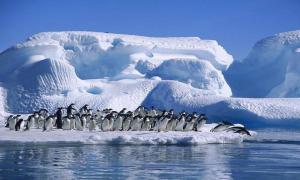 Ледяная Вселенная: факты об Антарктиде
