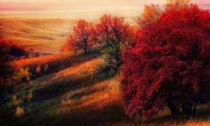 10 мест, где осень невероятно прекрасна...