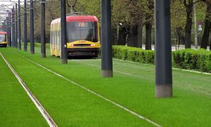 Газон на трамвайных путях