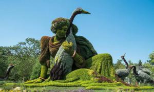 Зеленые произведения искусства в Монреальском ботаническом саду