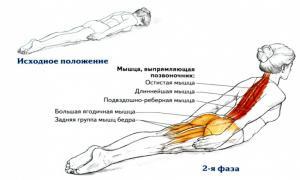 Простое упражнение для выпрямление спины