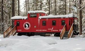 Это обычный старый вагон в лесу. Но стоит лишь приоткрыть дверь