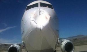 ФОТО ДНЯ: Вот что происходит, когда стая птиц встречается с самолетом.