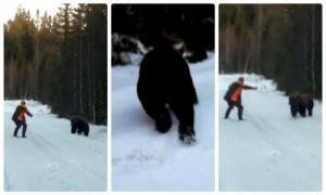 Охотник показал как можно спастись от медведя!