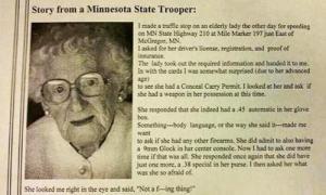 Полицейский остановил пожилую леди для проверки документов. Эту встречу он запомнит надолго