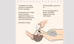 Правила оказания первой медицинской помощи.