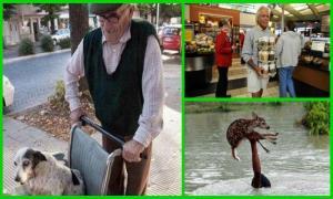 Пост о тех, кто делает добро (32 фото)