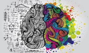 Что любит и чего не любит наш мозг!