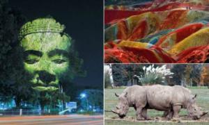 16 потрясающих фотографий, в реальность которых сложно поверить