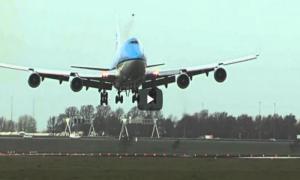 Вот что бывает, когда самолёт врезается в птицу.
