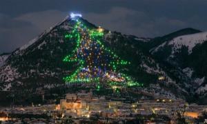 11 самых зрелищных новогодних елок мир
