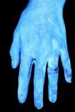 Оказывается, только 5% людей моют руки правильно. Узнайте, входите ли вы в их число