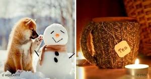 15 причин полюбить наступающие холода