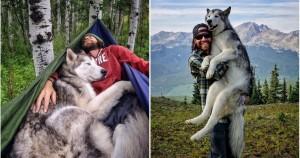 Это самый счастливый пес на земле. Убедитесь в этом!